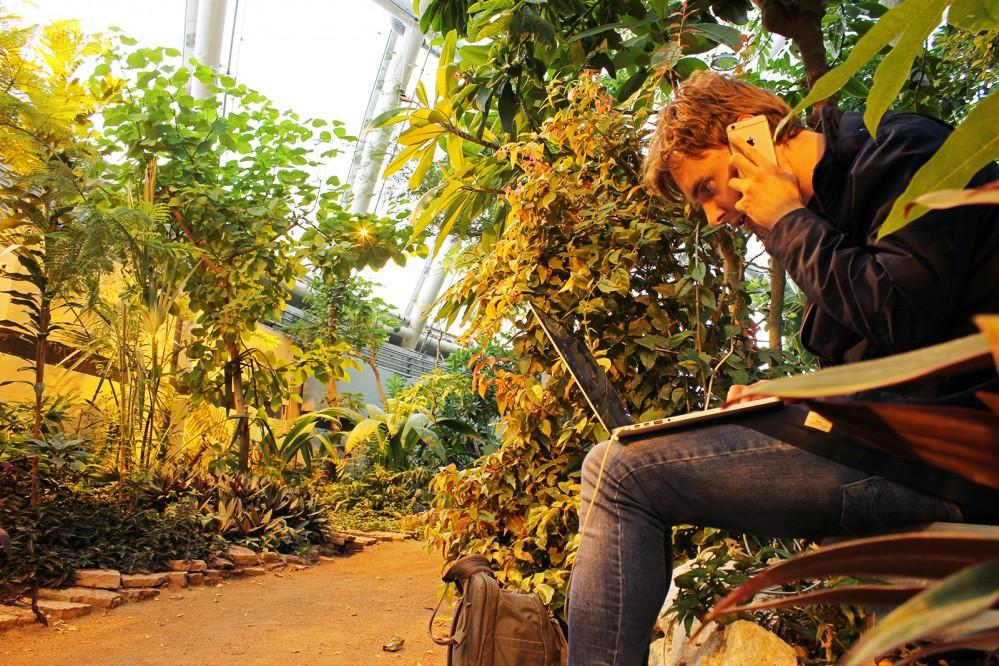 Væksthusene I Botanisk Have Bliver Scene For Lydkunst